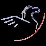 Pegasus Datensysteme